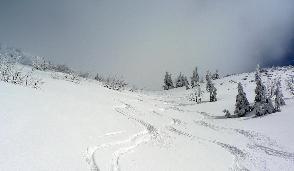 chleb-velkonocny-skialpaktual